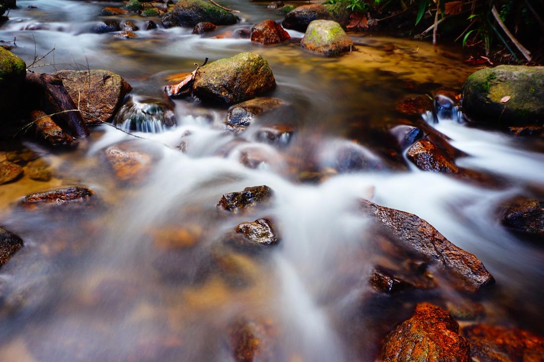 fotografowanie-jesieni-kurs-fotografii-012